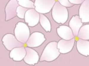 kvety-1